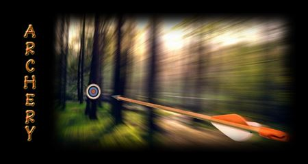 Picture for category Archery