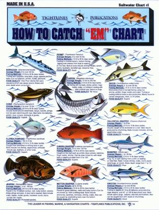 "Picture of How To Catch ""Em"" Charts"