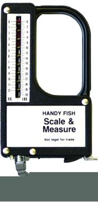 Picture of Eagle Claw Fisherman's Tapemeasure & Scales