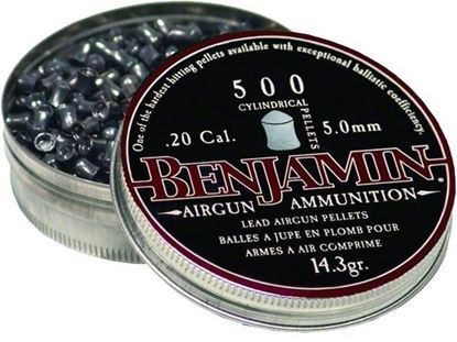 Picture of Benjamin Cylindrical Pellets