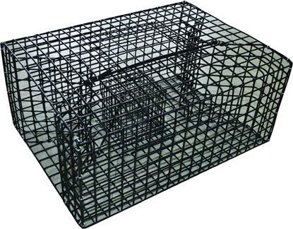 Picture of Crab Traps