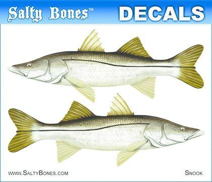 Picture for manufacturer Salty Bones