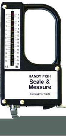 Picture for category Scales & Measurers