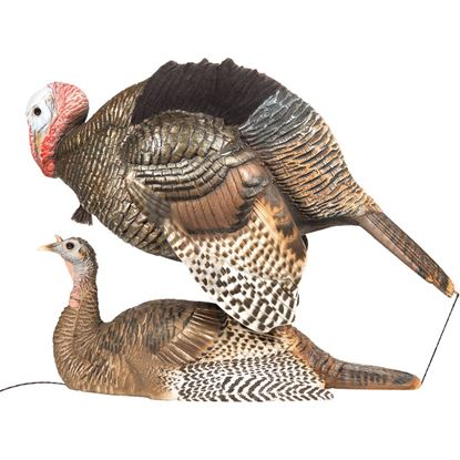 Picture of Dave Smith Decoy Mating Motion Pair