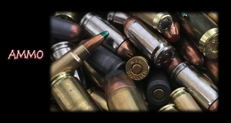 Picture for category Ammo