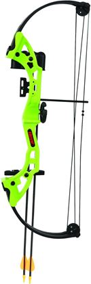 Picture of Bear Archery Brave Compound Bow Set