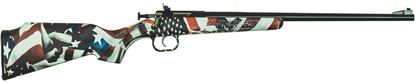 Picture of Keystone Sporting Arms Crickett Rifle with Hydrodipped Synthetic Stock