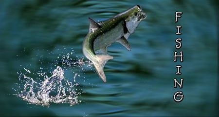 Picture for category Fishing